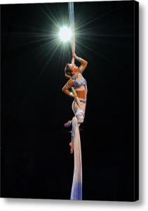 A Star is Born - The Acrobat